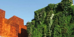Colliers Magazine: Vertical gardens-an ecological art in cities